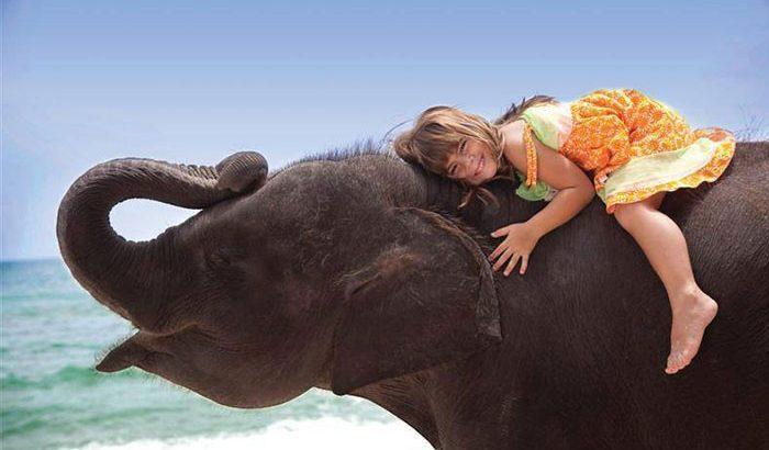 в тайланд с детьми